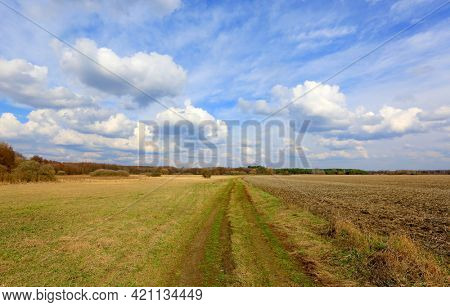 Landscape with ground road under nice sky in spring steppe