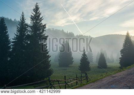 Rural Valley On Foggy Sunrise. Wonderful Nature Scenery Of Forested Apuseni Mountains, Romania. Wond