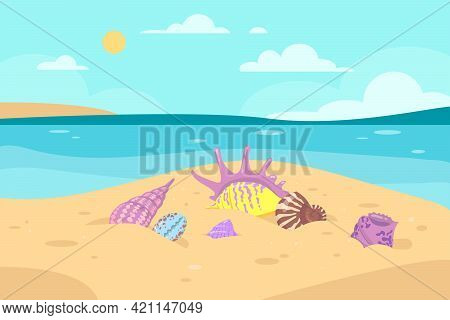 Different Colorful Seashells On Seashore Vector Illustration. Seashells Of Various Shapes In Sand, S