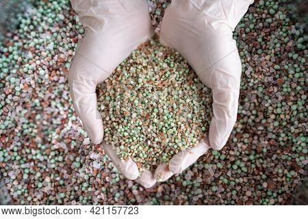 Garden Grass Care Fertilizer Growth Fertilizing Chemical
