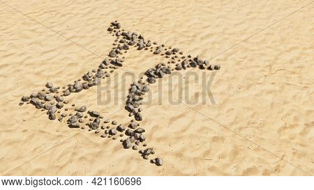 Concept conceptual stones on beach sand handmade symbol shape, golden sandy background, gemini zodiac sign. 3d illustration symbol for  esoteric, the mystic, the power of prediction of astrology