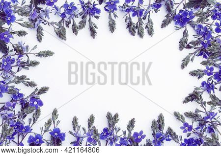 Template In The Form Of A Frame Of Delicate Wildflowers In Blue On A White Background
