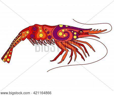 Shrimp - Vector Linear Full Color Illustration. Ocean Crustacean - Colorful Shrimp With Patterns. Te