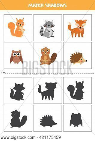 Shadow Matching Cards For Preschool Kids. Cute Woodland Animals.