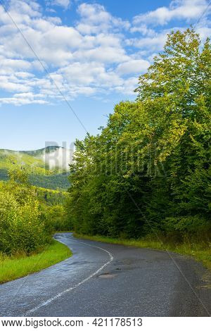 Country Road Through Forest In Mountains. Beautiful Fresh Morning In Early Autumn. Path Winding In T