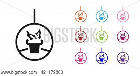 Black Plant In Hanging Pot Icon Isolated On White Background. Decorative Macrame Handmade Hangers Fo