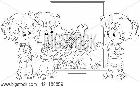 Happy Little Kids Walking At A Zoological Garden And Watching A Funny Tropical Parrot With Bright Pl