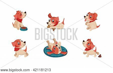 Funny Jack Russell Terrier Character Wriggling Tail, Rolling And Sitting Vector Set