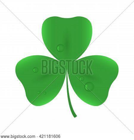 Trefoil Clover Icon. Shamrock Leaf. Vector Illustration.