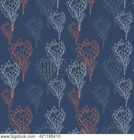 Flower Pattern With Tropical King Proteas In Blossom On Navy Background. Hand Drawn Line Style Vecto