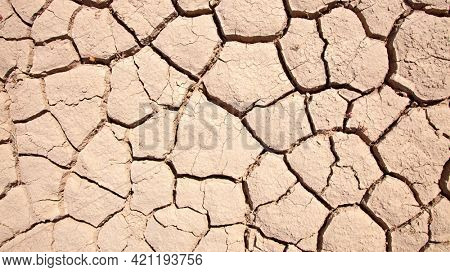 cracked earth Dried land in the desert. Cracked soil crust