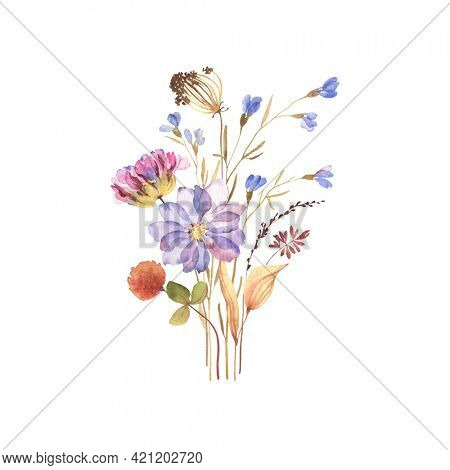 Bouquet, poster, card with colorful flowers in herbarium style. Dry flowers isolated on white background, hand painting image, print for invitation, greeting or congratulation cards.