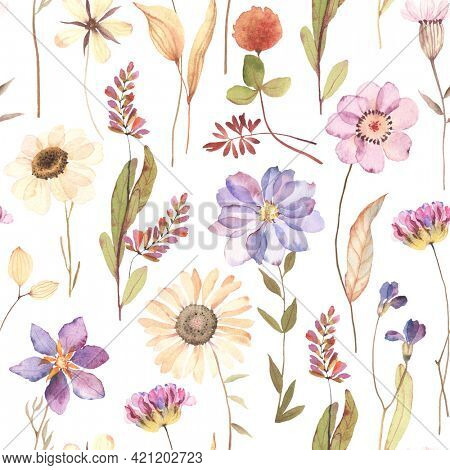 Watercolor floral seamless pattern with colorful flowers in herbarium style. Dry flowers isolated on white background, hand painting image, print pastel colors.