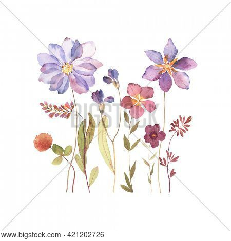 Floral card with abstract wildflowers and plants. Watercolor colorful flowers isolated on white background, hand painted image, print for poster, banner, border or greeting, invitation cards.