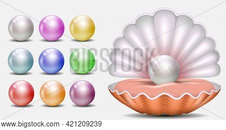 set of realistic shiny pearls or various color pearls inside sea shell or opened sea shell with soft mollusk. eps vector