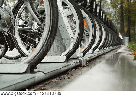 Bicycles For Rent. Close-up Of The Wheels Of Parked Bicycles In A Row On The Sidewalk In The City. S