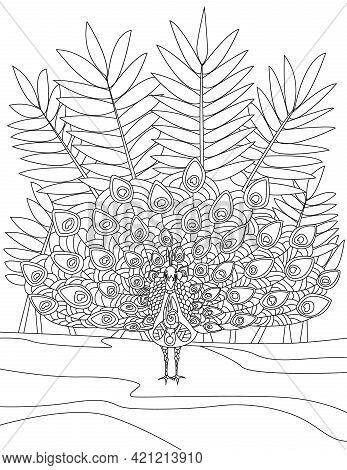 Tropical Birds Doodles On Trees, Hand Drawing Pelican, Line Image Flamingo, Tree Vector Illustration