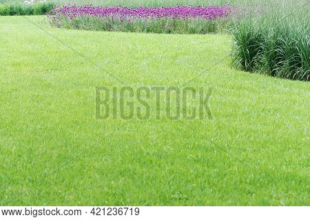 A View Of A Perfect Lawn Framed By A Round Flowerbed With Various Flowers