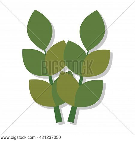Isolated Pair Of Barley Leaves Icon Vector Illustration