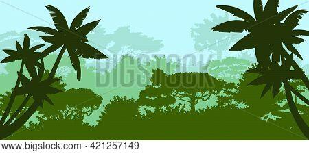Palm Trees. Jungle Silhouette. Rainforest. Panoramic Foggy Morning Or Evening Landscape. Dense Tropi