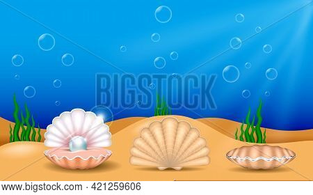 Set Of Realistic Shiny Pearls Or Various Color Pearls Inside Sea Shell Or Opened Sea Shell With Soft