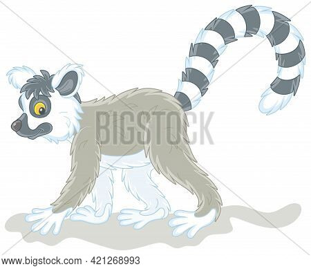 Exotic Tropical Madagascar Lemur With A Very Long Striped Tail Walking, Vector Cartoon Illustration