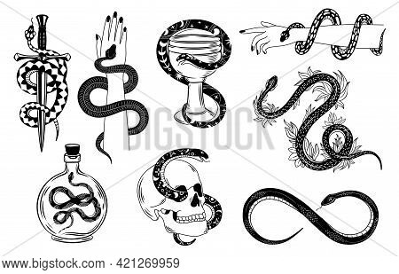 Snakes Tattoo. Occult Snake Wrapped Around Hand, Skull, Dagger, Bowl And Poison. Serpent Silhouette