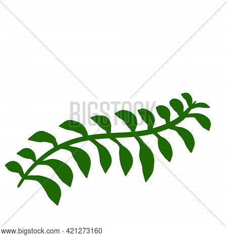 Fern Leaf. Element Of Nature And The Forest. Green Bracken Plant. Flat Cartoon Illustration Isolated