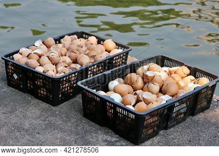 Eggshells In 2 Baskets Put It In The Sunlight To Dry And The Benefits Of Eggshell Can Be Used As A F