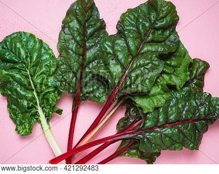 Colorful Freshly Harvested Swiss Chard Leaves On The Kitchen Table.