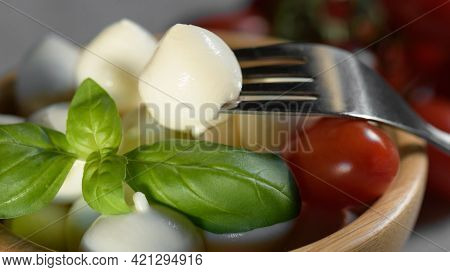 Close Up Of Fresh Apulian Small Mozzarella Cheese Ball Is On A Wooden Bowl With Mozzarella And Fresh