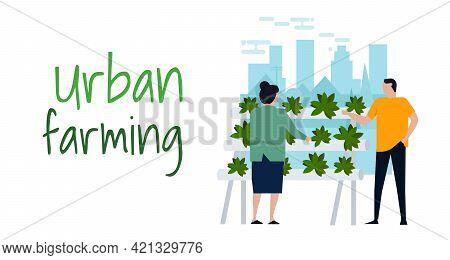 Urban Farming Hydroponics Gardening In City Organic Farm Activities