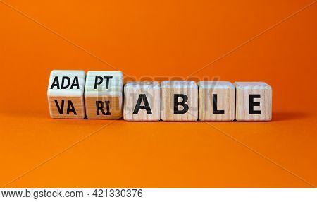 Adaptable Or Variable Symbol. Turned Wooden Cubes And Changed The Word Variable To Adaptable. Beauti