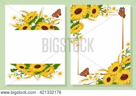 Sunflowers And Frames In A Set Of Postcards.chamomiles, Sunflowers And Butterflies In A Vector Set O