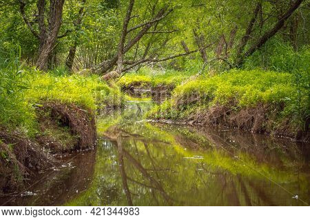 A Tranquil Landscape Of A Creek Lazily Meandering Through The Lush Spring Greenery In The Forest.