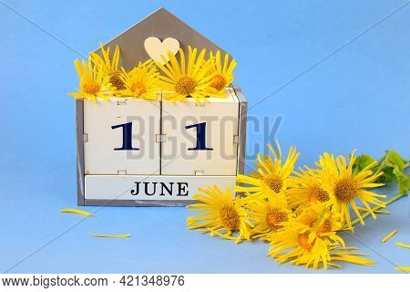 Calendar For June 11: Cubes With The Number 11 , The Name Of The Month Of June In English, A Yellow