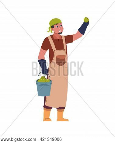 Agricultural Worker Harvesting. Gardener Picking Fruit From Tree. Male Character With Bucket Full Of