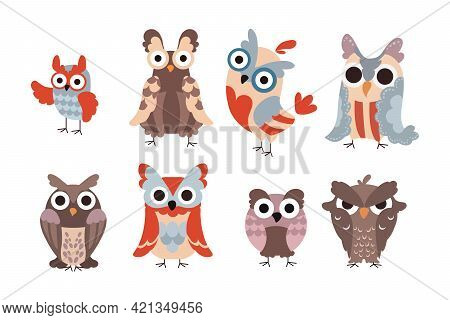 Cartoon Owls. Wild Animal Characters With Funny Eyes And Feathers. Isolated Birds Childish Graphic.