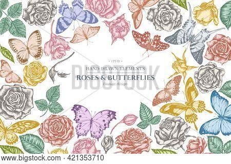 Floral Design With Pastel Menelaus Blue Morpho, Giant Swordtail, Lemon Butterfly, Red Lacewing, Afri