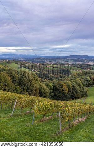 Highest vineyards in Austria near the village Kitzeck im Sausal, Styria, Austria