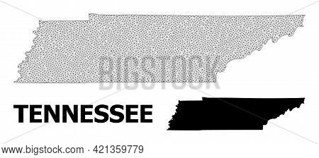 Polygonal Mesh Map Of Tennessee State In High Detail Resolution. Mesh Lines, Triangles And Points Fo