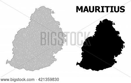 Polygonal Mesh Map Of Mauritius Island In High Detail Resolution. Mesh Lines, Triangles And Points F