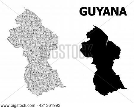 Polygonal Mesh Map Of Guyana In High Resolution. Mesh Lines, Triangles And Dots Form Map Of Guyana.
