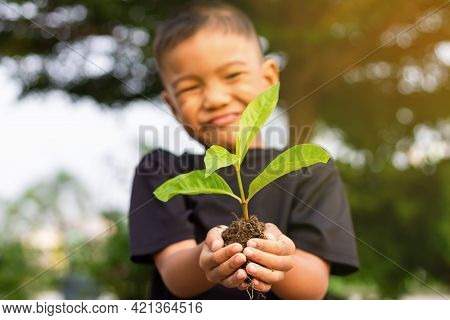 Portrait Image Of 5-6 Years Old. Happy Asian Child Boy Hands Holding A Little Green Plant With Soil.