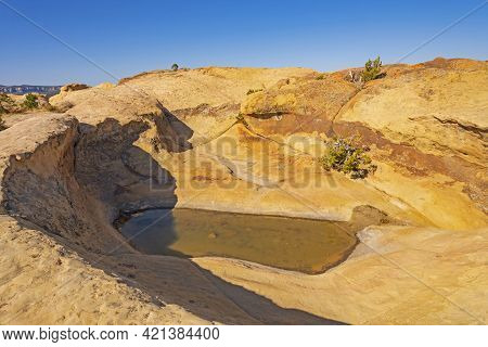 Desert Pothole On A Coloful Sandstone Ridge In El Malpais National Monument In New Mexico
