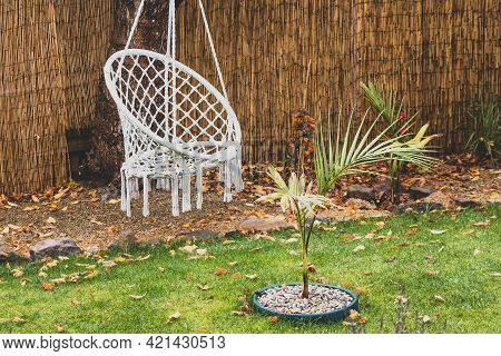 Idyllic Backyard With Autumn Tones And Fallen Leaves On The Grass With Boho Hippie Hanging Chair And