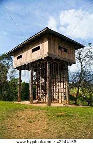 Wildlife Watching Tower In Thailand