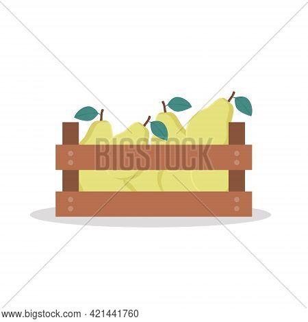 Wooden Box Full Of Pear. Vector Illustration