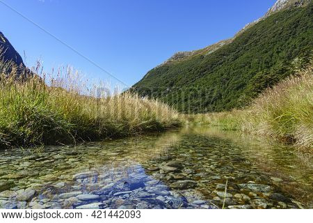 Shallow Stony Stream With Grassy Sides Reflected In Water.