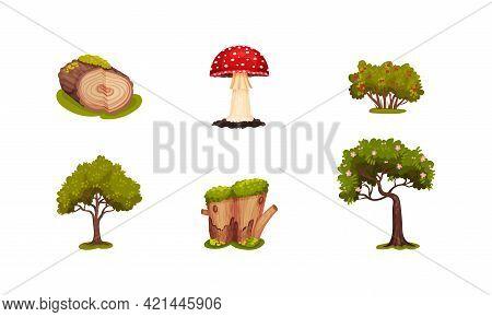 Forest Elements With Mossy Log, Mushroom And Trees Vector Set
